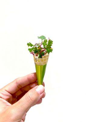 Le cornet végétal